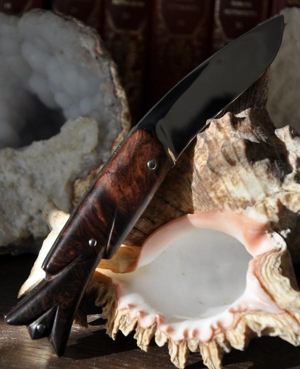 austral loupe de palissandre du honduras